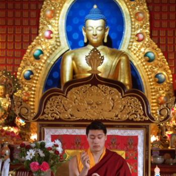 HE Avikrita Rinpoche