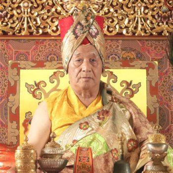 HH Dagchen Sakya Rinpoche B