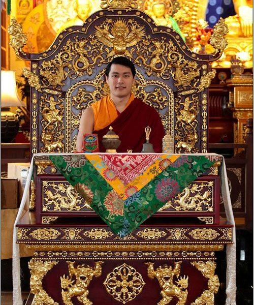 HE Avikrita Rinpoche throneB