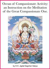 Ocean Of Compassionate Activity